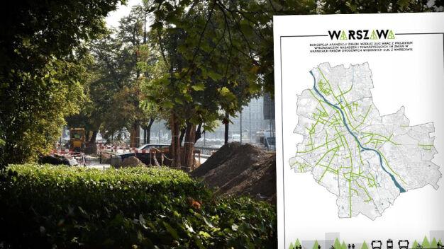 Więcej drzew na dużych ulicach. Miasto szuka projektanta zieleni
